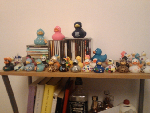 Matt and Laura's incredible duck collection