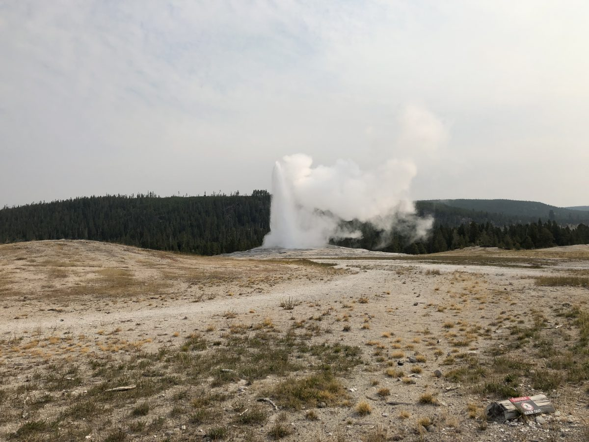 Token Old Faithful photo