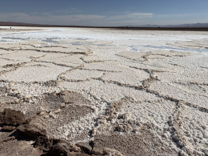 A snapshot of the salty, alien landscape