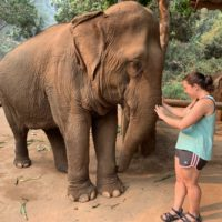 Chiang Mai: The One With The Elephants