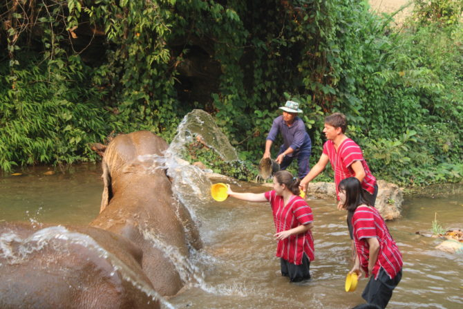 Bathing the elephants (until it descended into an all-out waterfight between the humans)