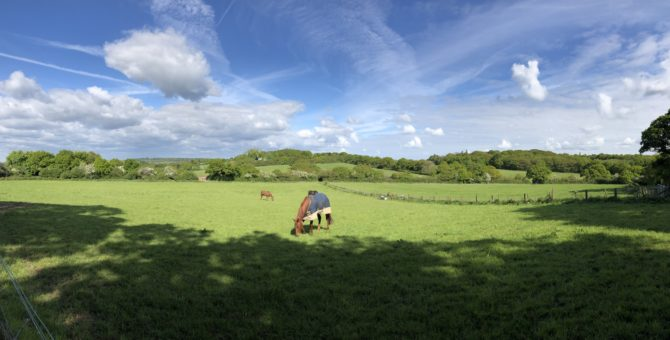 Bucolic fields (Pano credit: Randi)